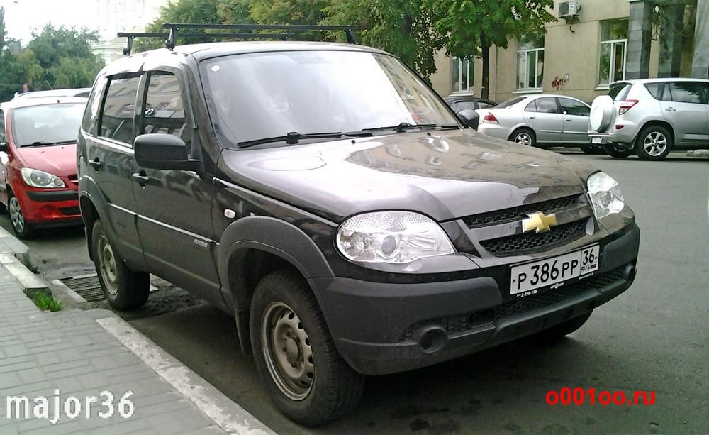р386рр36