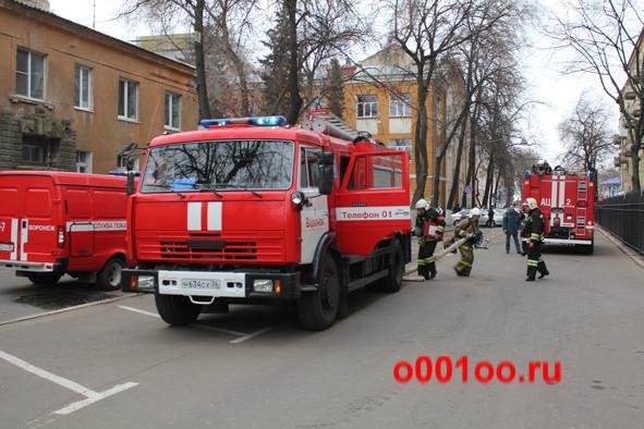 М634СХ36