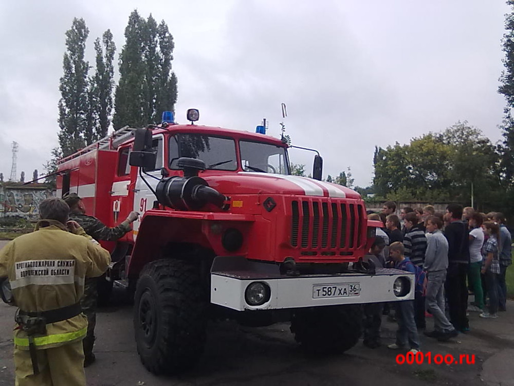 Т587ХА36