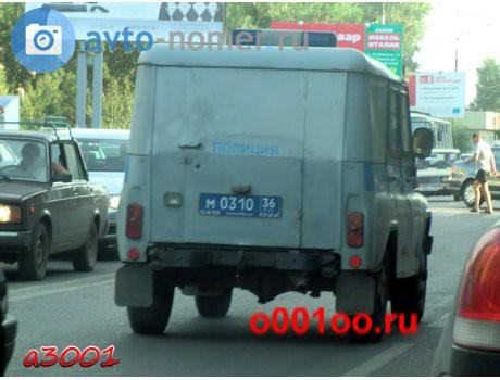 М031036