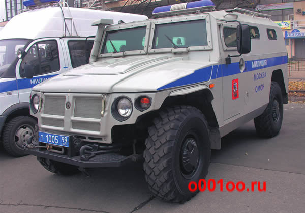 Т100599